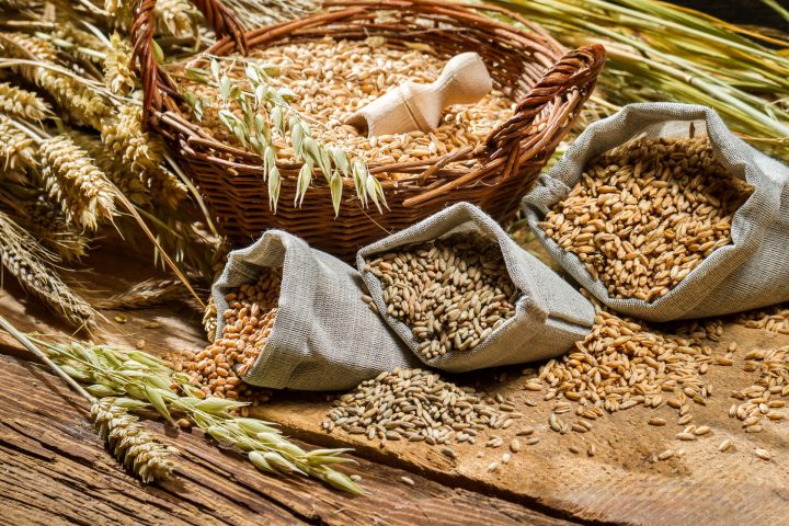 Whole Grains - Dietary Significance of Carbohydrates